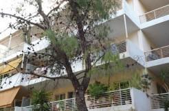 Варкиза, купить квартиру в Греции