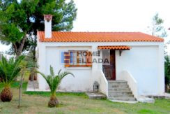 Sale: house and land in Lagonisi (Attica)