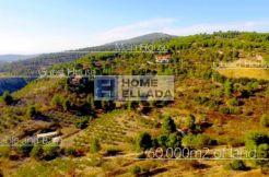 Sale - homestead in the suburbs of Athens 1367 m² Attica - Polydendri