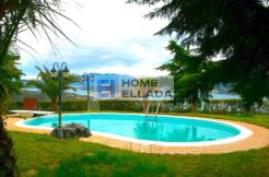 Buy a villa in Greece real estate Lemonodasos