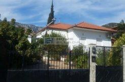 100 м от моря недвижимость дом в Греции Пелопоннес