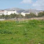 В Афинах-Миладезе купить участок в Греции