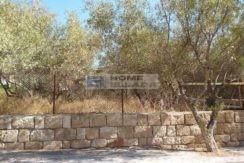 В Греции купить участок в Вульягмени - Афины