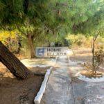 Πώληση - Οικόπεδο Αθήνα, (Βάρη - Βάρκιζα) Ασύρματος
