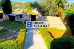 Μεσιτικό γραφείο στην Ελλάδα στην Αγία Μαρίνα (Αττική)