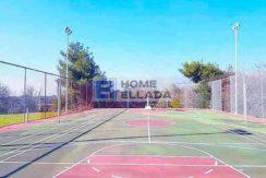 Rent - villa, estate Athens - Nea Eritrea 735 m²