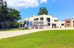 Rent in Greece homestead 735 m² Athens - Nea Eritrea