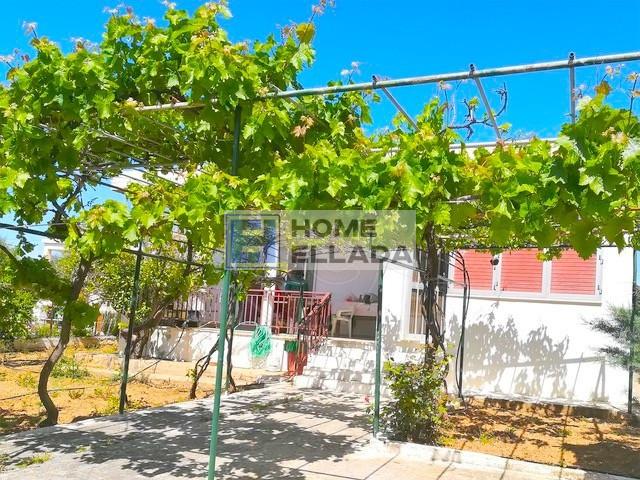 Агия Марина (Аттика) дом