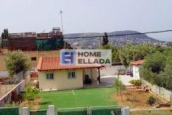 Жильё в Греции 50 м² земельный участок 500 м²