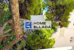 Varkiza-Athens by the sea real estate for rent 250 sq m