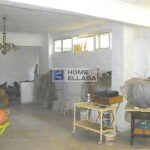 Apartment 200 m from the sea of Athens - Varkiza