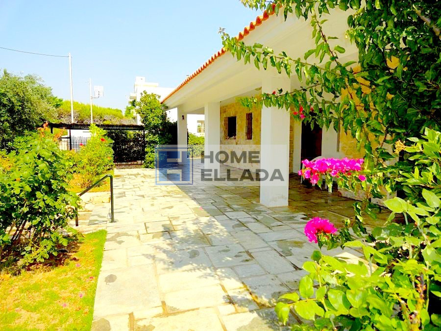 House 80 m from the sea of ​​Attica - Markopoulo