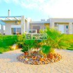Дом - усадьба 300 м² Аттика - Артемида