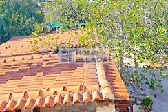 Rent in Athens apartment 110 m² Vari-Varkiza