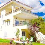 Athens Country House Rental - Nea Makri
