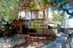 Sale - real estate in Porto Rafti - Attica