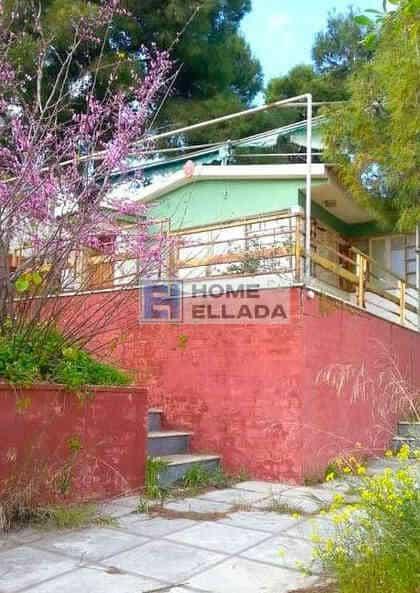 Πώληση - Εξοχικό Σπίτι Πόρτο Ράφτη - Αθήνα