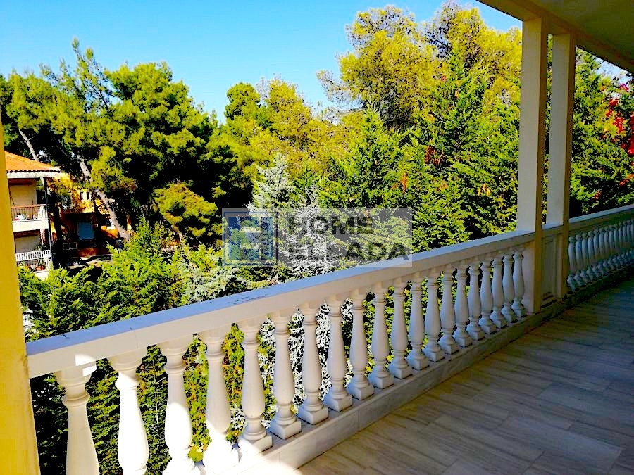 Sale 200 m² property for residence permit Drosya - Athens158_900x675