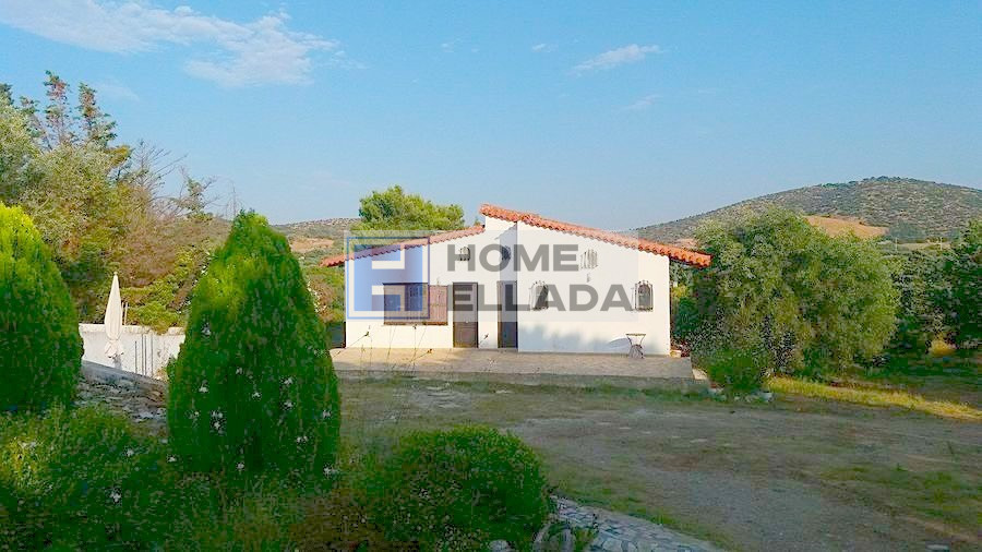 Plot of 10000 m² for sale and house Kalivia Attica