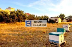 House and land for sale 1400 m² Attica - Agia Marina
