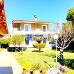 Sale, house 310 m² Anavissos - Attica