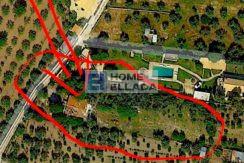 Μονοκατοικία προς πώληση 100 τ.μ., οικόπεδο 3600 τ.μ. Λαγονήσι - Αττική