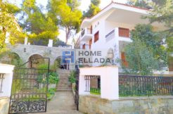 Rent, Athens - Ekali House 270 m²