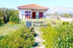 Sale - House of 100 m² in Koropi (Attica)