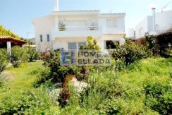 Sale - house in Paleya Fokea (Attica) 235 m²