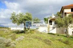 Sale - house 630 m² - plot 4000 m² Agia Marina Attica-1_optimized