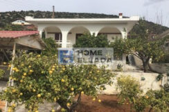 Sale - house in Attica (Lagonisi)